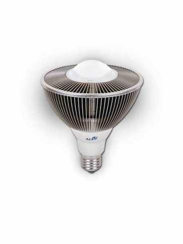 Aeon Lighting PAR38 Asteria Series 30W Bulb IP68