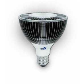 Aeon Lighting PAR30 Asteria Series 15W Bulb IP68