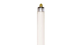 T6 Linear Fluorescent Lamps